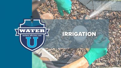 Irrigation - Learn about irrigation